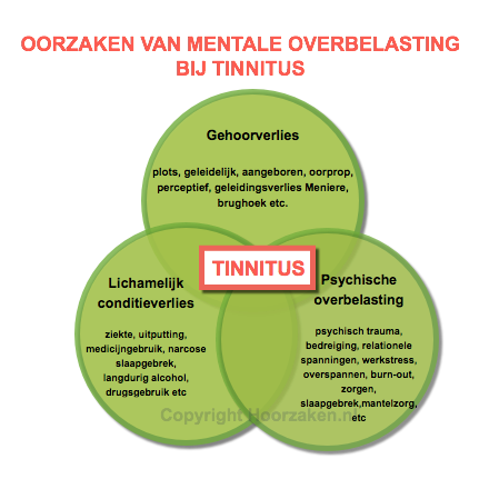 tinnitus model