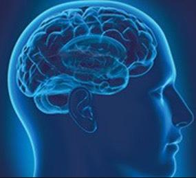 hersenen compenseren schade gehoor tinnitus