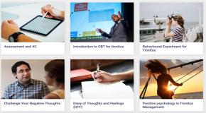 iCGT voor tinnitus: gratis Cognitieve Gedragstherapie voor tinnitus op internet