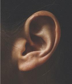 Het oor