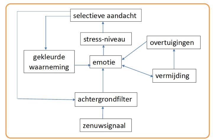 selectieve aandacht tinnitus